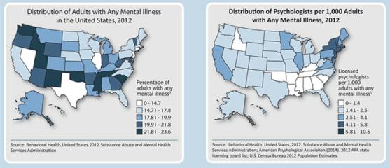Fields of Knowledge Blog_APA Mental Illness graphic